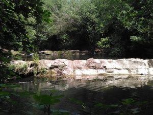 Rivière de la Brague