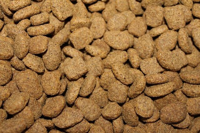 Croquettes pour chien