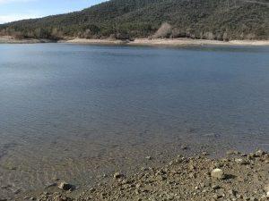 Lac de Saint Cassien (83)