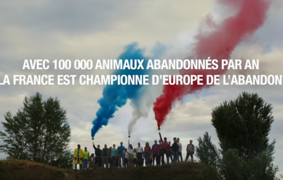 "30 millions d'amis ""We are the champions"""